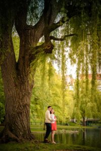 engagement photos under the willow tree in commons