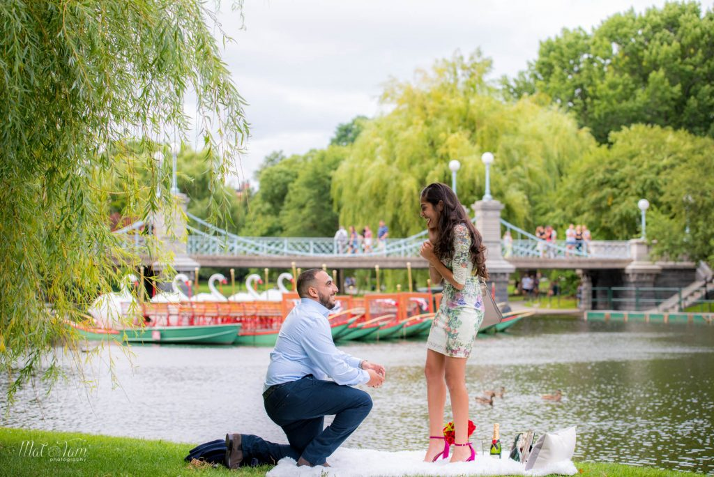 mattamphoto-wedding_proposal_boston_public_garden-6